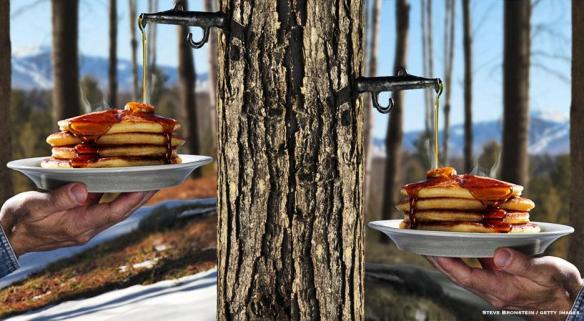 xl_7483_TP-maple-syrup-finedininglovers